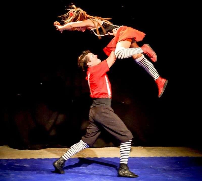 Avenir du Cirque